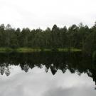 Mechove Jeziorko